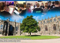 auckland castle web image
