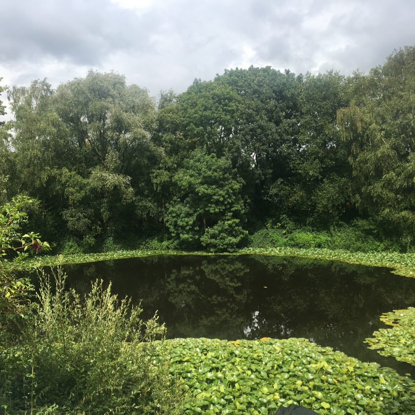 Lone Tree Crater / Pool of Peace